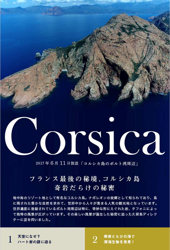 コルシカ島って穴だらけなんです。